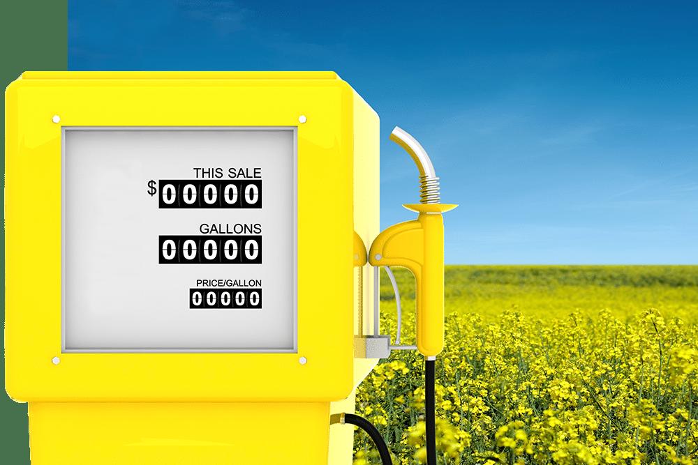 Bio carburant dans un champ