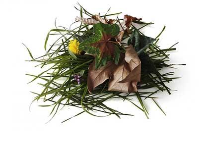 Déchets verts à recycler c Paprec Recyclage